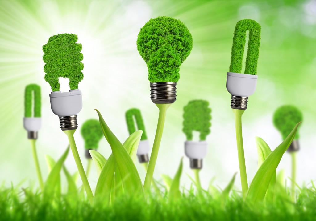 ¿por qué no te pasas a la energía verde?