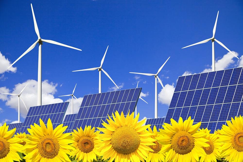 aerogeneradores, paneles solares y girasoles